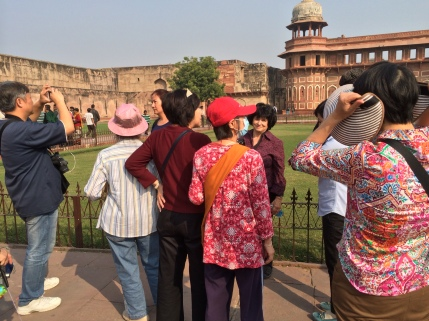 49 (Agra Fort in Red Sandstone)