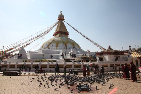 18 Boudha Stupa with Birds